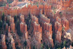 Bryce at Sunrise. Bryce Canyon National Park stock images
