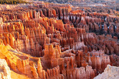 Bryce at Sunrise. Sunrise at Bryce Canyon National Park in Utah Stock Image