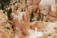 Bryce Tower. Landscape image of sandstone spires (hoodoos) at Bryce Point, in Bryce Canyon National Park, Utah Royalty Free Stock Photos