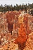 brycekanjonbildande parkerar den sedimentary rocken arkivfoto