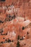 bryce峡谷np 图库摄影