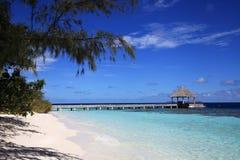Brygga av den maldivian ön Arkivbilder
