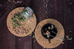 Bryggad läcker örtte på en träbakgrund royaltyfri bild