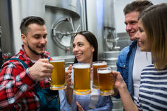 Bryggare som rostar öl på bryggeriet Arkivfoto