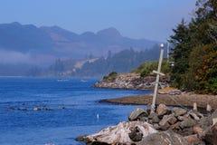 Bryggasikt på den Oregon kusten Royaltyfria Foton