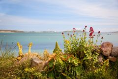 Bryher, Isles of Scilly Royalty Free Stock Photography