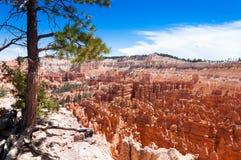 Bryka jaru park narodowy Obrazy Stock