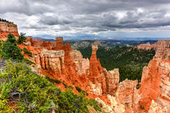 Bryka jaru park narodowy Zdjęcia Stock