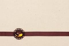 Bryna bandet med broche Royaltyfria Foton