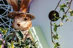 Bryna kaninen i en sugrörhatt royaltyfri fotografi