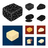 Brynza, smoked, colby jack, pepper jack.Different types of cheese set collection icons in black, flat style vector. Symbol stock illustration Stock Photos