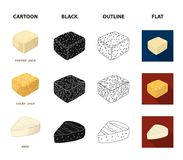 Brynza, smoked, colby jack, pepper jack.Different types of cheese set collection icons in cartoon,black,outline,flat. Style vector symbol stock illustration Stock Photography