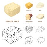 Brynza, smoked, colby jack, pepper jack.Different types of cheese set collection icons in cartoon,outline style vector. Symbol stock illustration Royalty Free Stock Image