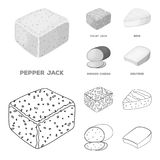 Brynza, smoked, colby jack, pepper jack.Different types of cheese set collection icons in outline,monochrome style. Vector symbol stock illustration Stock Images