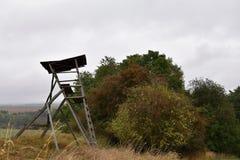 Bryony pour des chasseurs dans les bois par temps d'automne photo libre de droits