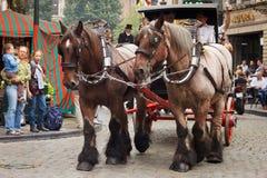 BRYSSEL BELGIEN - SEPTEMBER 06, 2014: Presentation av det Bosteels bryggeriet med hästvagnen arkivfoton
