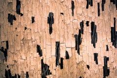 bryta värme som looks måla sträckning för skalning s Arkivfoto