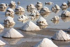 bryter salt arkivbilder