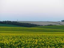 Brytyjska wieś, pola blisko Stonehange, Anglia, z elektryczność pilonami w odległości fotografia stock