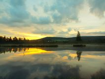 Brzask jesieni jezioro z lustrzanym poziomem wody w tajemniczym lesie, młody drzewo na wyspie w środku Świeży zielony kolor ziele Zdjęcia Royalty Free