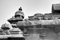 Brzeg świątynia przy Mahabalipuram fotografia royalty free