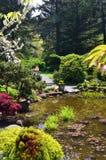 Brzeg akrów stanu park, Charleston Oregon fotografia royalty free