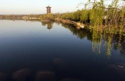 Brzeg jeziora Zdjęcie Stock