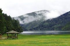 brzeg jeziora zdjęcia royalty free