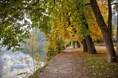 Brzeg jeziora jesieni kolory w Zell am Widzią, Salzkammergut, Austria Fotografia Royalty Free