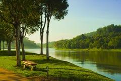 brzeg jeziora park Obrazy Royalty Free