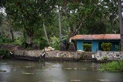 Brzeg jeziora w Kerala Zdjęcia Stock
