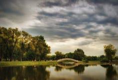 Brzeg jeziora w wiośnie fotografia stock