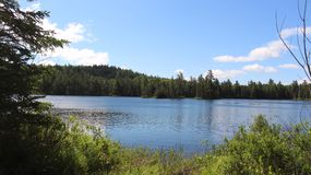 Brzeg jeziora widok Obrazy Royalty Free