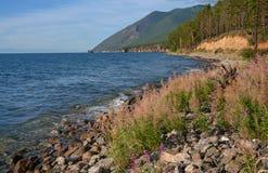Brzeg Jeziorny Baikal Zdjęcia Royalty Free