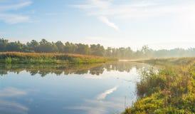 Brzeg jezioro przy wschodem słońca Obrazy Stock