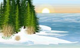 Brzeg lasowy jezioro Wiosna Roztapiaj?cy l?d pierwszy ?nie?yczki royalty ilustracja