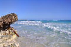 Brzeg morze kaspijskie i parasol drzewka palmowe w wodzie Obrazy Royalty Free