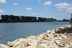 Brzeg Rhine (Rhein) fotografia stock