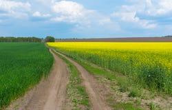 Brzeg rzeki Dnepr rzeka blisko Svetlovodsk miasteczka obraz stock