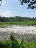 Brzeg rzeki w tropikalnych otaczaniach na wyspie Mindoro, Filipiny zdjęcia royalty free