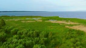 Brzeg Vistula laguna zakrywająca z pośpiechami zbiory wideo