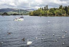 Brzeg widok Jeziorny Windermere w Jeziornym okręgu Obrazy Royalty Free