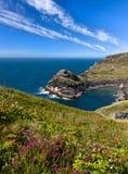 brzegowa boscastle linia brzegowa Cornwall blisko Obraz Royalty Free