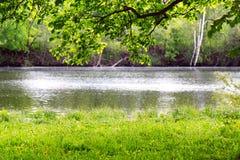 brzegowa rzeka Obraz Stock