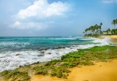 Brzegowy ocean obrazy stock
