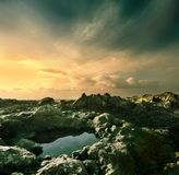 brzegowy ocean Fotografia Royalty Free