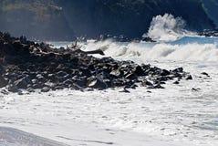 brzegowy ocean Pacific niewygładzony zdjęcia stock