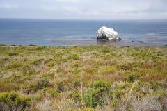 brzegowy Pacific Obrazy Stock