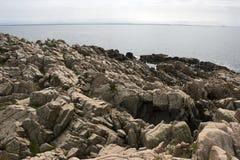 brzegowy skalisty Fotografia Stock