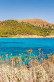 brzegowy skalisty morze obraz stock